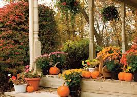 fall garden flowers. Fall Flower Garden Ideas Flowers E