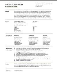 Entry level account executive resume ...