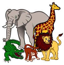 wild animals clipart. Wonderful Animals Download African Coloured Medium Image Png Clip Art Royalty Free Free  Melonheadz Zoo Trip Wild Animals Clipart On Animals Clipart