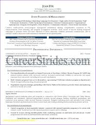 Event Planner Resume Template Professional Organizer Contract Template Event Planner 14
