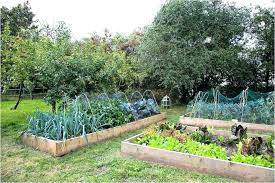 soil mixes for raised beds raised bed soil mixture raised bed gardening soil mix awesome tips soil mixes for raised beds