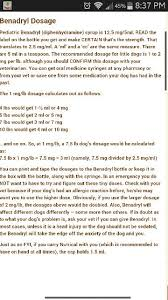 Dosage Of Benadryl For Dogs Twinkie Gets 1 5ml Of