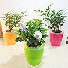 Mkono 3 Pack Self Watering Planter Plastic Flower Pot, Random color L