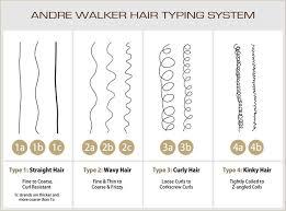 Andre Walker Hair Chart Andre Walker Hair Typing System Lajoshrich Com