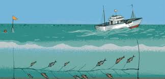 Image result for lining fishing method