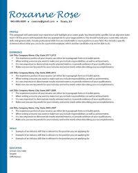 Resume Key Phrases Simple Professional Resume Writing Resume Help Job Search Etsy
