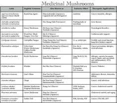 322 Best Health Benefits Of Mushrooms Images In 2019