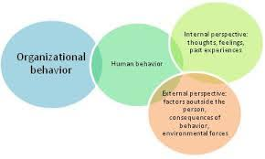 What Is Organizational Behavior Lecture On Organizational Behavior Model Assignment Point