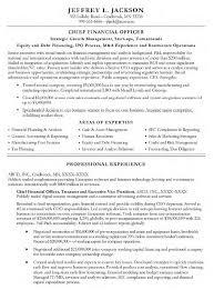 Cfo Resume Examples Classy 48 New Cfo Resume Examples Gy E48 Resume Samples