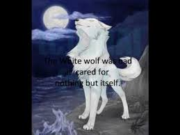black wolf and white wolf love. Contemporary White The Black Wolf And The White Part 1 Intended Wolf And Love H