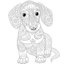 Dachshund Coloring Page Dachshund Coloring Page Dog Coloring Pages