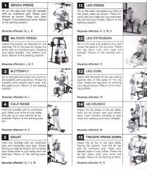 59 Rare Weider Exercise Chart