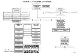 student union for student power are student governments obsolete