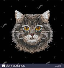 Eye Cat Design Brown Gray Striped Cat Eyes Face Head Embroidery Design