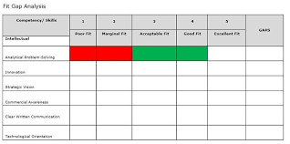 Fit Gap Analysis Template Mostly Use By The Project Managers Hr