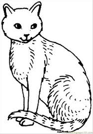 Small Picture Cat 21 Coloring Page Coloring Page Free Cat Coloring Pages