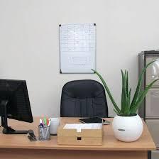 low maintenance office plants. Low Light Office Plants Maintenance T