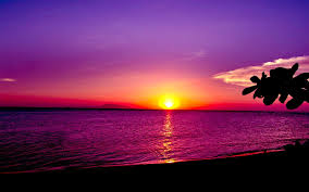 ocean sunset wallpapers. Wonderful Sunset OCEAN SUNSET WALLPAPER  116851 HD Wallpapers Wallpapersinhq  In Ocean Sunset C
