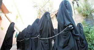 الدولة مع  دار  الاسلام ودار  الحرب !