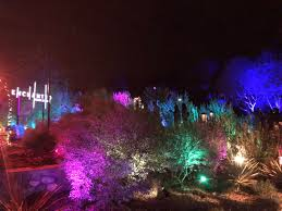 Enchanted Forest Of Lights Descanso The Lights Are Back On At Descanso Gardens La Weekly