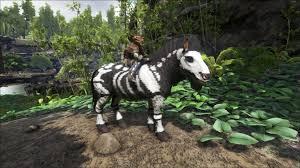 skeletal horse equus ark paint the