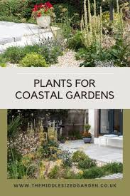 what to plant in a coastal garden