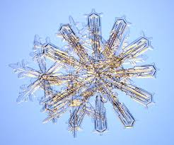Snowflake Bullet Point Unusual Snow Crystals