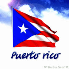 Image result for puerto rico flag animation