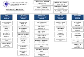 Organizational Chart Neda Mimaropa