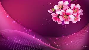 Cool Pink And Black Background Cool Pink Background 55 Images