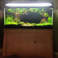 picture of setup your tank and enjoy