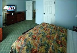 la quinta inn tampa busch gardens accommodation in busch gardens area