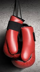 boxing gloves red boxing vertical