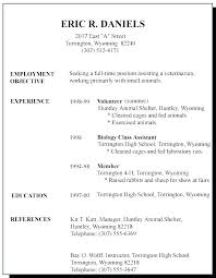 Resume Format Examples For Job Inspiration Sample Job Resume Examples Cover Letter Example Job Resume Samples