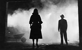 build your book case film noir and the books to own by jake hinkson in recent years film noir studies have exploded in popularity for anyone just beginning their film noir obsession or anyone who s always ready to add to