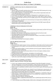 Travel Program Manager Resume Samples Velvet Jobs