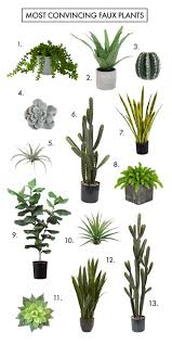 Are You Faux Real How To Find The Most Convincing Faux Plants A