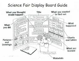 Science Poster Board Science Fair Project Board Template Science