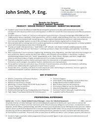 Best Executive Resume Samples Best Executive Resume Format Senior
