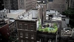 rooftoppatiojpg condo patio gardens70 condo