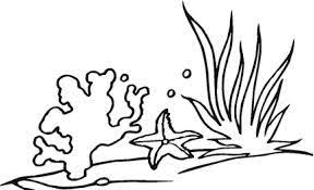 Risultati Immagini Per Coralli Disegni Sea And Summer Corallo
