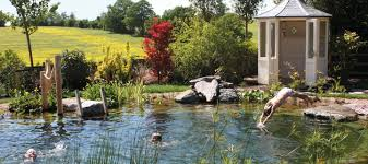 Small Picture Swimming Ponds and Natural Swimming Pools