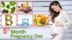 Month Wise Pregnancy Diet Chart In Hindi 5th Month Of Pregnancy Diet Which Foods To Eat Avoid
