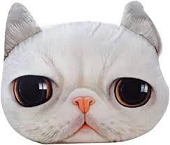 Plush Cushion❤️Jonerytime❤️Funny <b>3D</b> Cat Print Throw Pillow ...