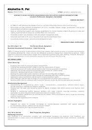 Company Resume Examples