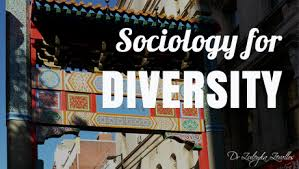 sociology for diversity dr zuleyka zevallos sociology prose