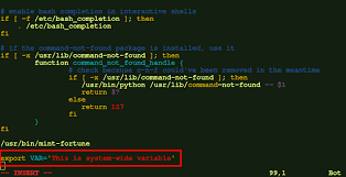 system wide environment variables in linux