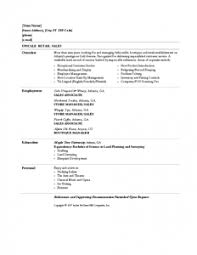 resume examples manager resume templates retail personal summary areas of expertise analyzing statistics data case retail resume template free