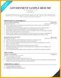Federal Resume Template Delectable Federal Resume Template Speedsalesco