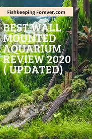 best wall mounted fish tank review 2020